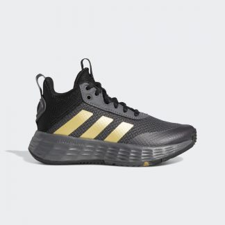 Ownthegame 2.0 Shoes tarjous